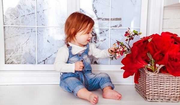 Kid Window And Red Flowers
